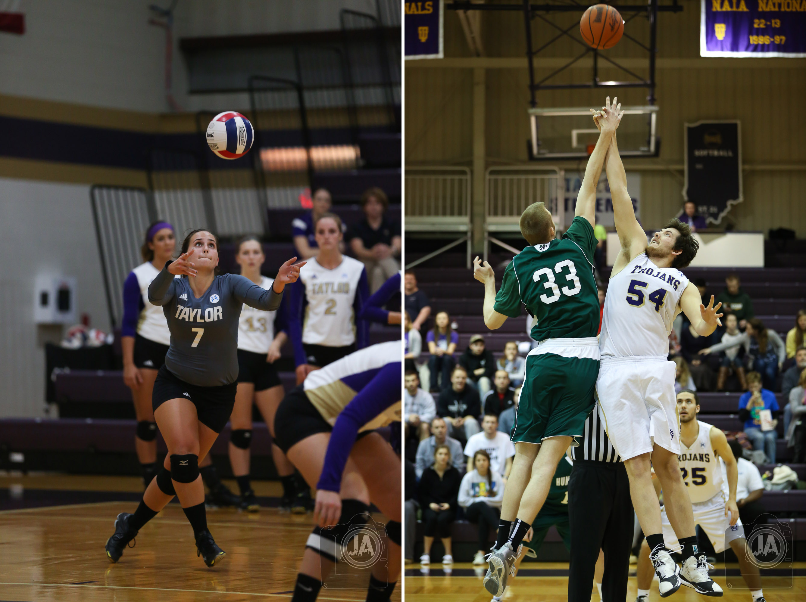 Taylor Volleyball and Basketball